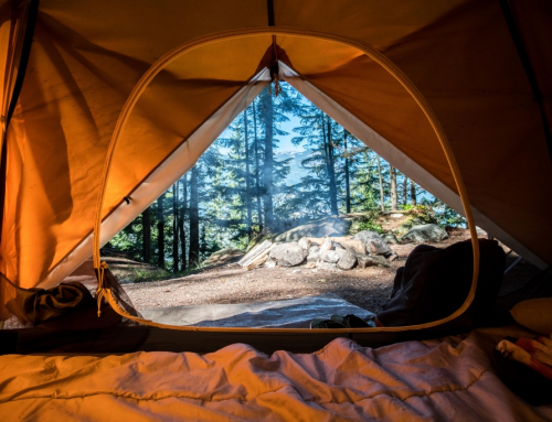 Guide to Camping on the Oregon Coast in 2021